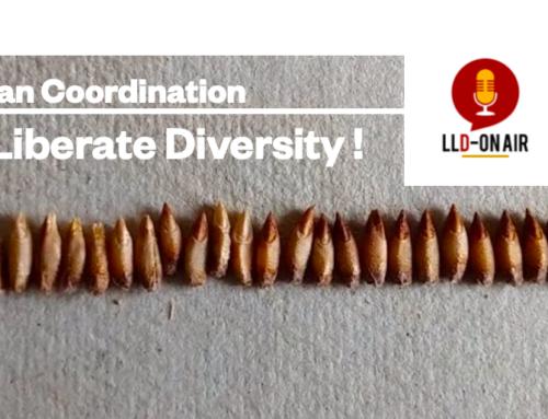 Let's Liberate Diversity! webinars