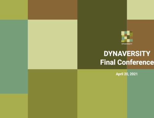 DYNAVERSITY Final Conference